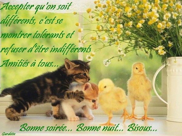 bonne nuit !!! - Page 2 Fcf8029d