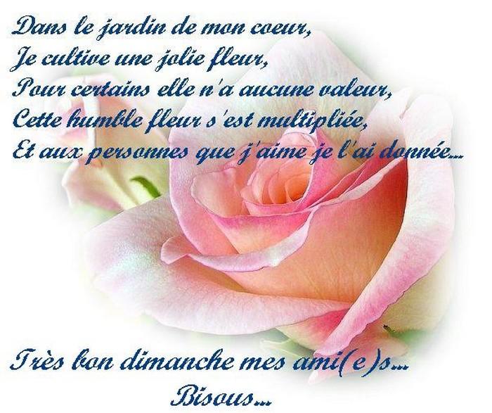 ♥Pensée du Jour♥ - Page 2 Bd18b4a2