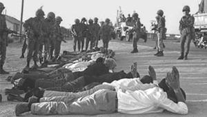 روح شاكيد شاهد على دماء 250 جنديا مصريا  2010-634224230334559332-455