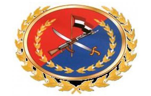 القبض علي سارقي سيارة الحرس الجمهوري المكلفة بحراسة منزل مرسي بالشرقية الشرقية -  2012-634842948346624377-662_main