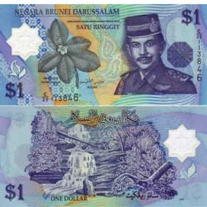Topics tagged under 9 on Dinar Daily Brunei-dollar-300x300