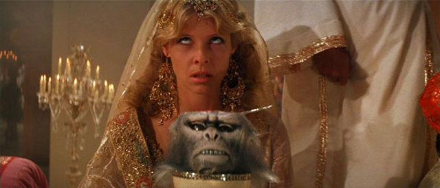 Finalmente respondida a maior questão da humanidade! Monkey-brain-cake-3