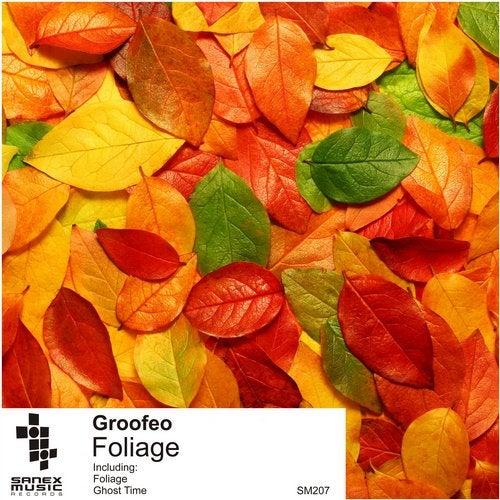 DUB TECHNO - Groofeo - Foliage - SM207 08358687-562b-4e96-b5f9-d072ed555a30