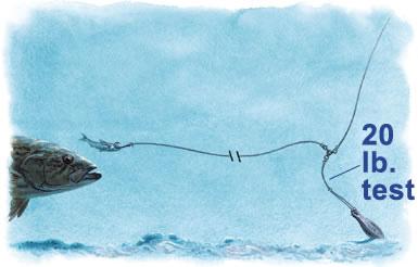 La Pesca del Pargo (Lutjanus Sp.) por José Manuel López Pinto  / Actualizado al 17/10/11 3br_1
