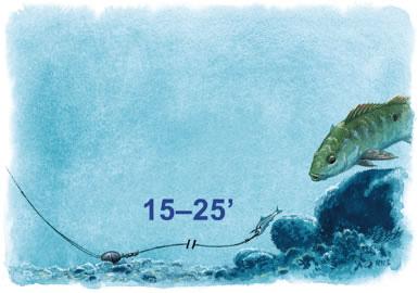 La Pesca del Pargo (Lutjanus Sp.) por José Manuel López Pinto  / Actualizado al 17/10/11 3br_3