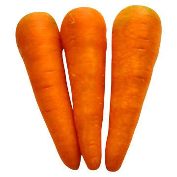 //  الكم اليوم موضوع وصفات لعلاج الزكام   // Fresh_Carrot