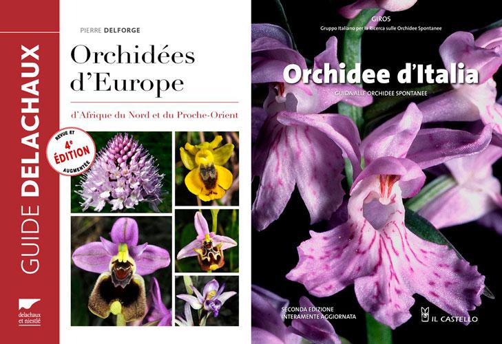 Bientot un nouveau livre sur les orchidées d'Italie Delforge-Orchidee_Italia