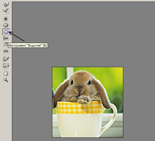 PhotoShop и все, что с ним связанно.  64a58a031d4bc1476b
