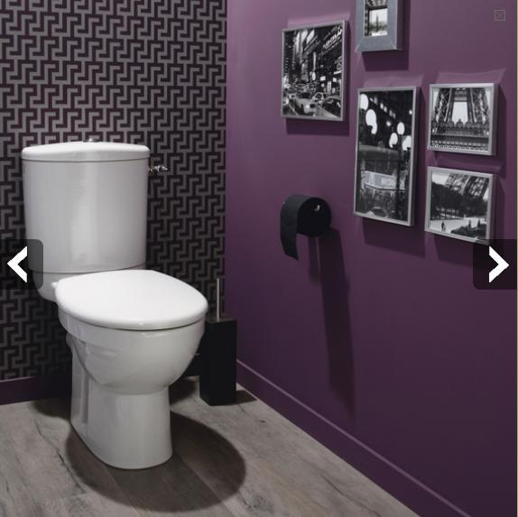 Refection des WC :) Wc-papier-peint-trompe-l-oeil-peinture-couleur-prune5