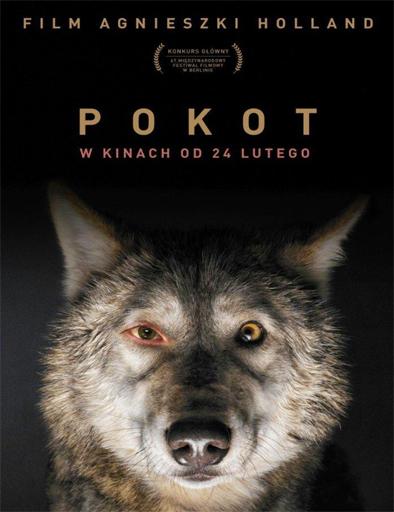 Meat should not be eaten Pokot_poster_polonia