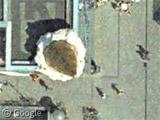 Les chroniques journalières de Googlesightseeing - Page 12 Gssat1651-atrb