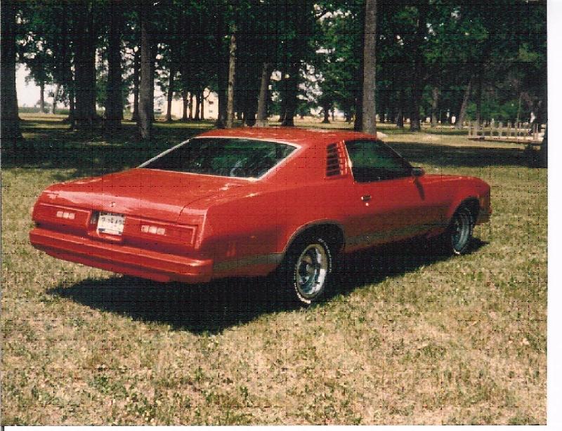 76/77 Malibu Back Side 1977_2