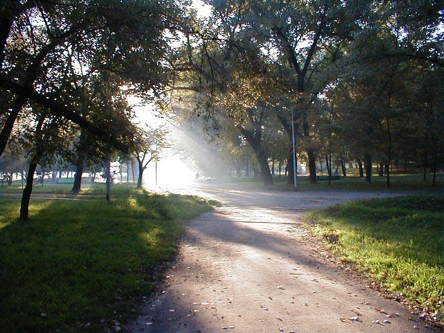Парк. Glpark7