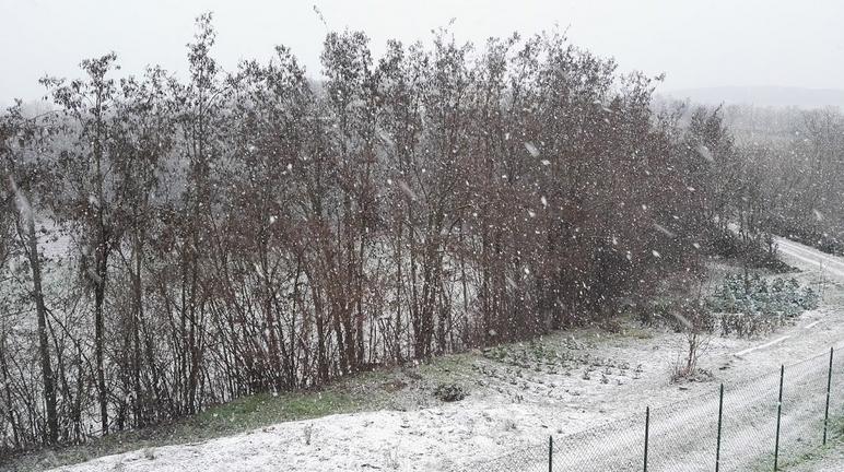 E' arrivata la neve! 06102-45d9f005-c743-4251-b93b-90a00bb985ac
