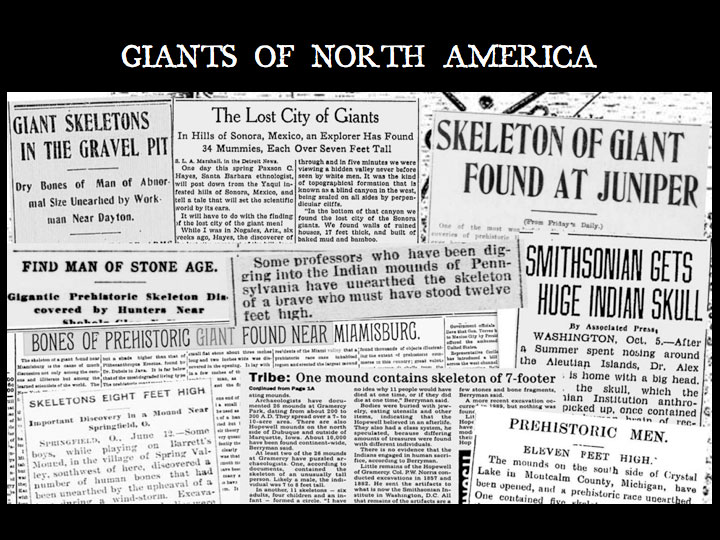 Giants on Record: America's Hidden History, Secrets in the Mounds and the Smithsonian Files  Vieiranewman1_html_m1a23d557