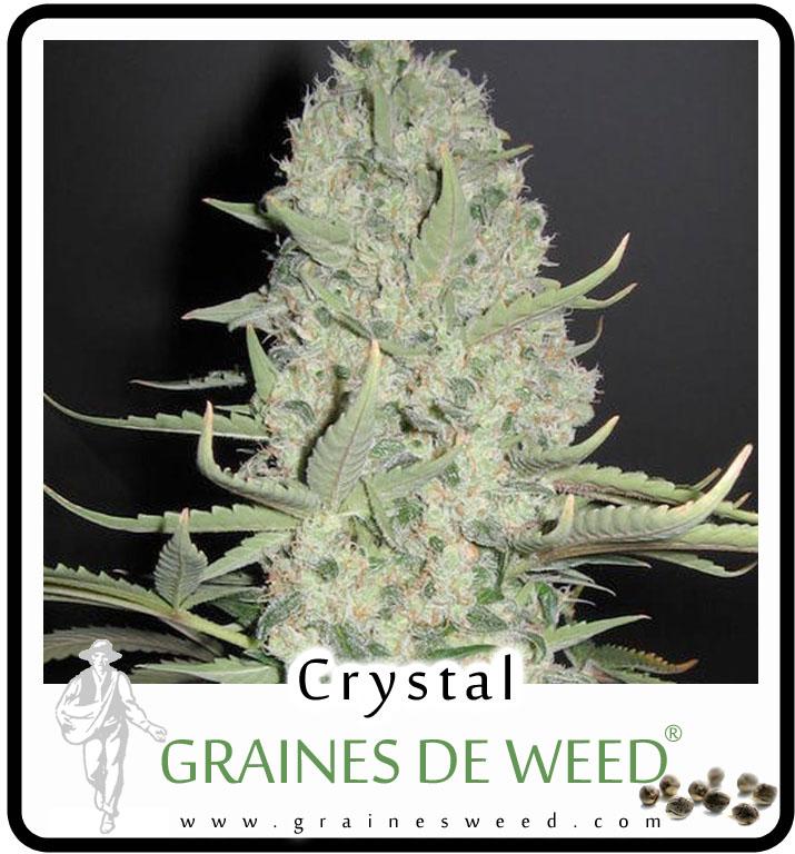 Vos avis sur les tracteurs Crystal Crystal