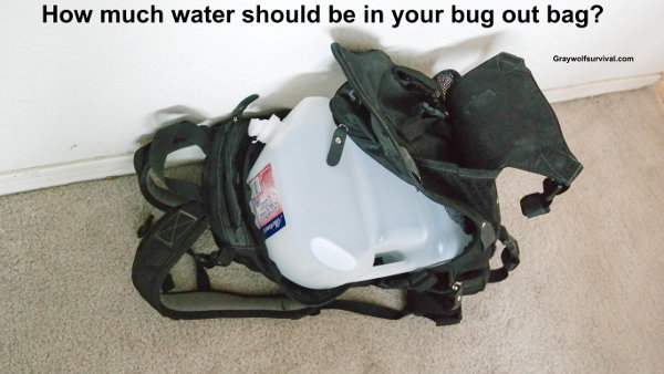 How much water should you be carrying in your bug out bag? How-much-water-should-be-in-your-bug-out-bag-600
