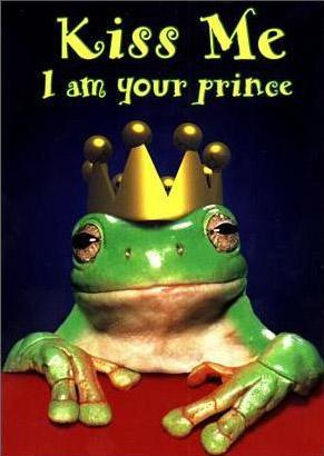 Le Flood en Images ! - Page 19 Frog
