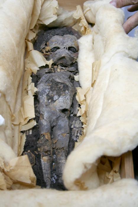 Las hijas de Tutankhamon Tut-Fetuses2