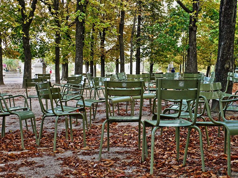 Concours Photo - Sujet concret d'Octobre - Des feuilles partout couchées sur les cailloux - Résultats en ligne 19bd6fbaf3186975b79b30499d0a5673