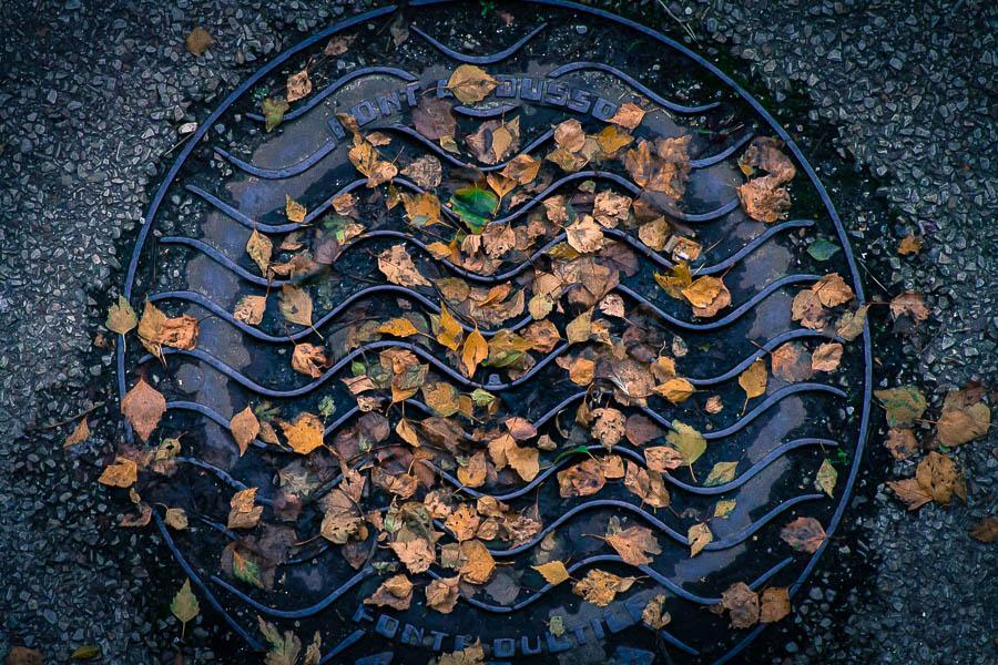 Concours Photo - Sujet concret d'Octobre - Des feuilles partout couchées sur les cailloux - Résultats en ligne 90c9f69918f9c7d9ccac1d993fdaf857