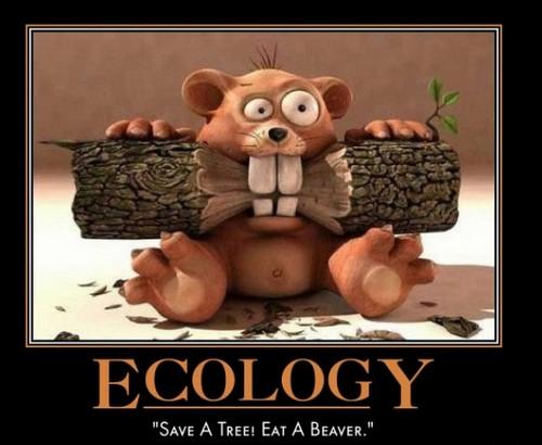 Chaîne écologique et durable Ecology-save-a-tree-eat-a-beaver