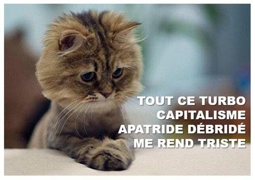 [LE TOPIC A LA CON] le dernier qui poste... poste - Page 4 Lolcat-sad-capitalisme