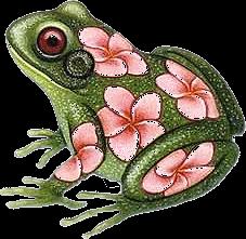 Les grenouilles 03478f9f