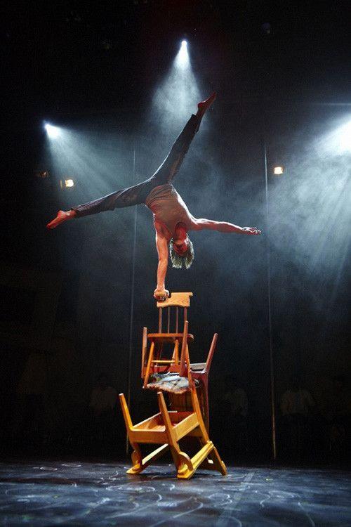 Le cirque ... 16e8399b