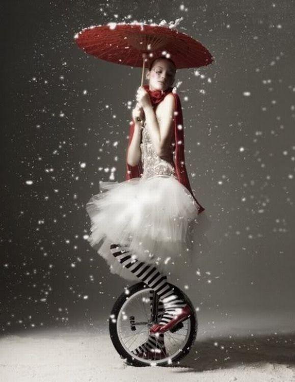 Le cirque ... 39291d40