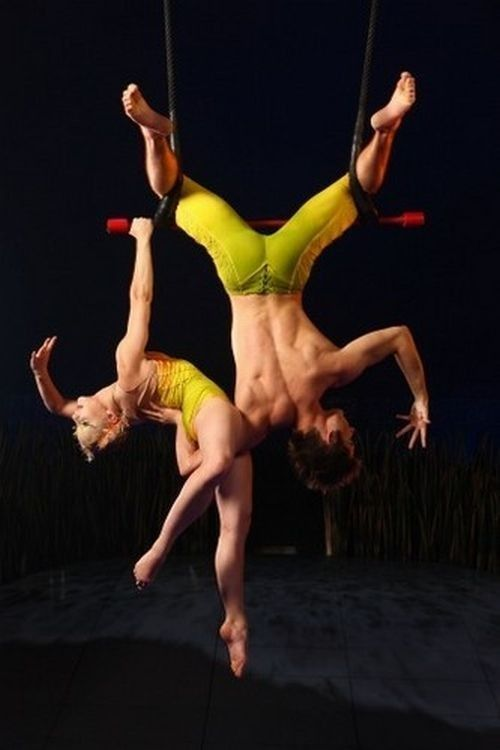 Le cirque ... 71f970a4