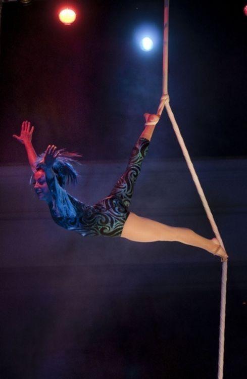 Le cirque ... 8fd09117