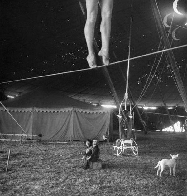 Le cirque ... Bc8b496d