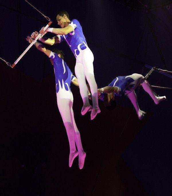 Le cirque ... - Page 2 C768d398