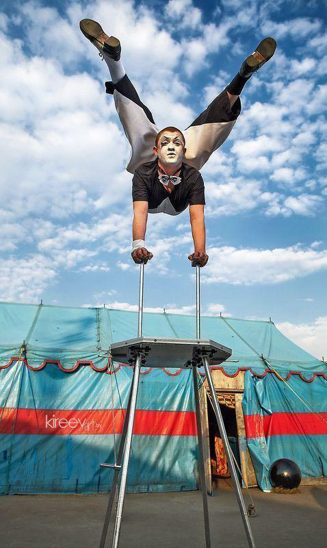 Le cirque ... - Page 2 D9a89f60