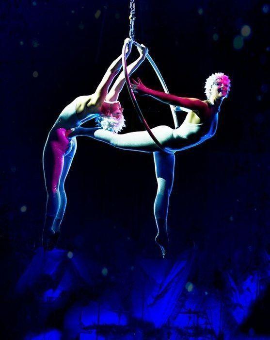 Le cirque ... E5cfa45e