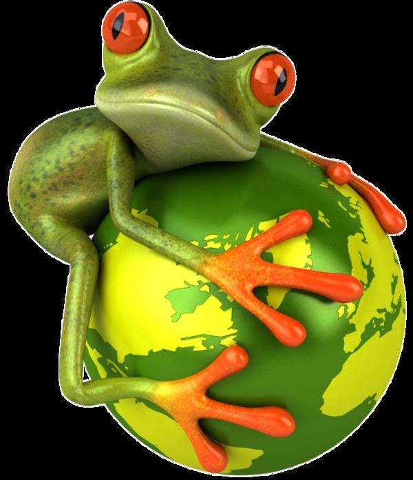 Les grenouilles Ef98e882