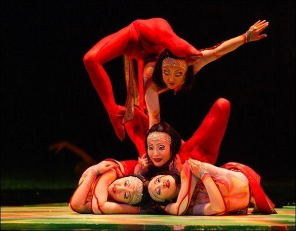 Le cirque ... Fc14461b