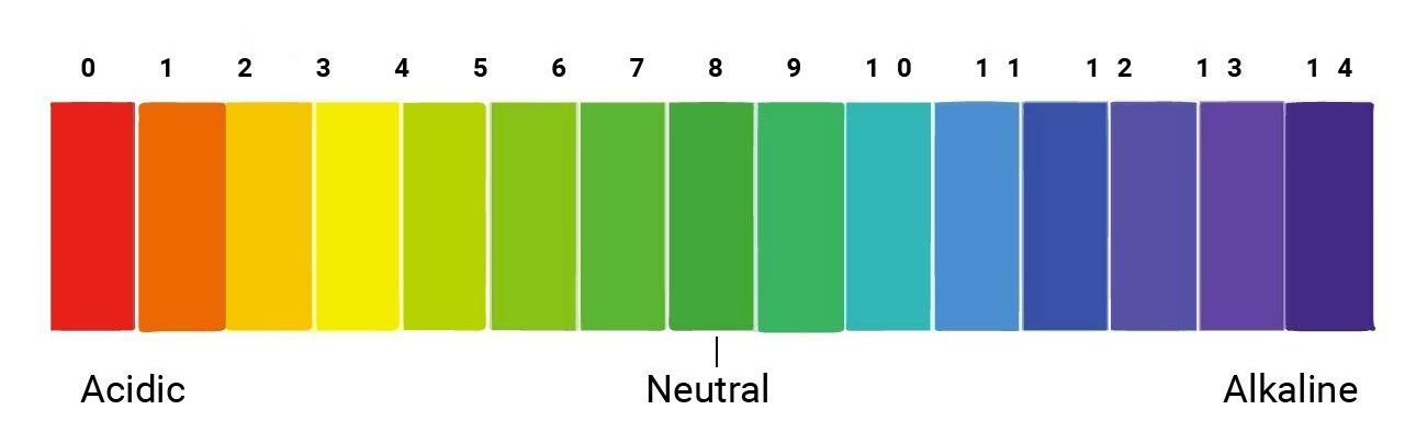 Nồng độ pH là gì? Nước sinh hoạt pH bao nhiêu thì phù hợp cho sức khỏe Nong-do-ph-la-gi-1