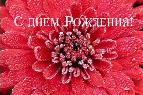 Поздравляем Снегурочку с днем рождения! Den_rojdeniya1