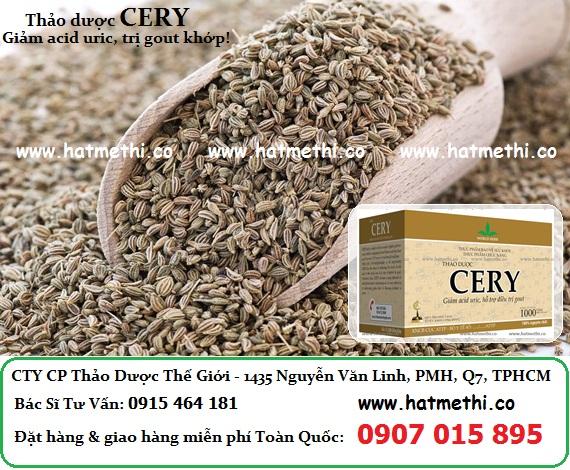 Thảo dược CERY trị gout, viêm thấp khớp Celery%20Seeds%20-%20Cery%20Herb