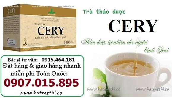 Thảo dược CERY ngăn ngừa và điều trị bệnh Gút, Khớp hiệu quả Cery%20benh%20gout