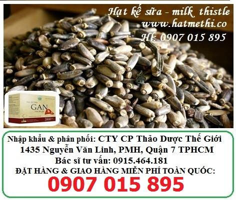 Hạt Kế Sữa giải độc gan, trị hiệu quả gan nhiễm mỡ, viêm gan Milk-Thistle