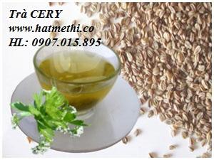 Bán thảo dược Cery trị gout, khớp Celery-8