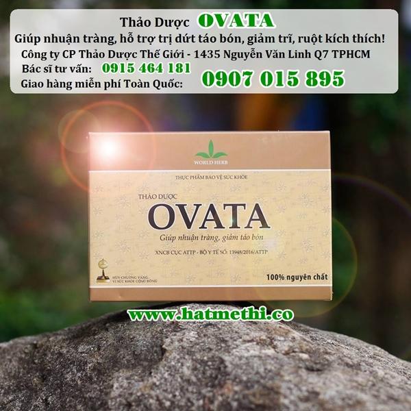 Vỏ hạt mã đề OVATA phòng ngừa và điều trị táo bón, trĩ Hop%20thao%20duoc%20ovata%20600x600