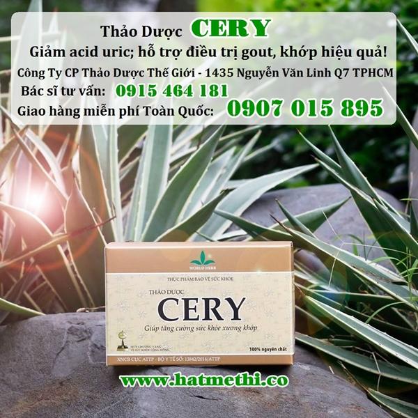 Thảo dược CERY ngăn ngừa và điều trị bệnh Gút, Khớp hiệu quả Hop_thao_duoc_cery%20600x600