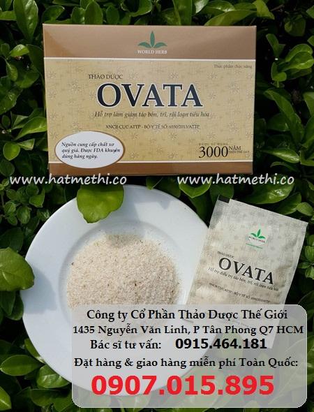 Thảo dược Ovata trị trĩ, táo bón, chống tái phát trĩ Th%E1%BA%A3o%20d%C6%B0%E1%BB%A3c%20ovata