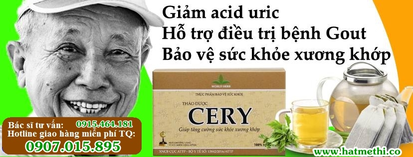 Thảo dược CERY (trà Celery) mua ở đâu uy tín chất lượng ThaoduocCERY