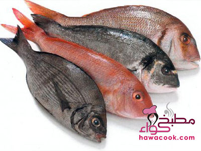 استمتعي بالسمك دون روائح Wholefish