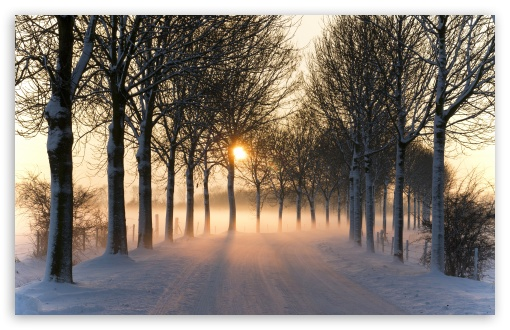 Misty Winter Afternoon wallpaper Misty_winter_afternoon-t2